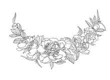 Wektorowi liniowi czarny i biały peonia kwiaty Zdjęcie Stock