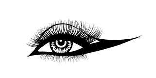 Wektorowi oko baty Pociągany ręcznie kobiety s seksowny luksusowy oko i folujący baty Pomysł dla uzupełnia biznesową wizyty kartę ilustracja wektor