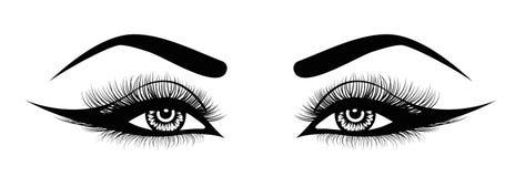 Wektorowi oko baty Pociągany ręcznie kobiety s seksowny luksusowy oko z doskonale kształtnymi brwiami i folującymi batami Pomysł  ilustracja wektor