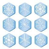 Wektorowi płatki śniegu na kawałkach lód royalty ilustracja
