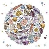 Wektorowi seashells ustawiający royalty ilustracja