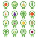 Wektorowi sztandary, majchery z świeżymi warzywami Obraz Stock