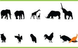 Wektorowi zwierzęta inkasowi obrazy royalty free