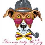 Wektorowy śmieszny kreskówka modnisia charcicy psa traken