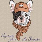 Wektorowy śmieszny kreskówka modnisia psa Francuskiego buldoga b