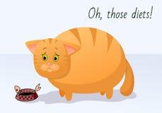 Wektorowy śmieszny zwierzę Gruby śliczny kot na diecie Pocztówka z komicznym zwrotem Smutny kot z pustym talerzem jedzenie Odosob royalty ilustracja