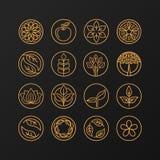 Wektorowy abstrakcjonistyczny emblemat - natura symbole ilustracji