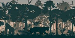 Wektorowy Afrykański horyzontalny bezszwowy tropikalny tropikalny las deszczowy dżungli tło z zwierzętami ilustracji