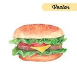 wektorowy akwarela hamburgeru rysunek ilustracja wektor