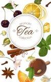 Wektorowy aromatyczny herbaciany sztandar ilustracji
