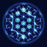 Wektorowy błękitny drzewo życie, święty geometria symbol Zdjęcie Stock