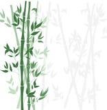 Wektorowy Bambusowy Lasowy tło, Płaski projekta szablon ilustracji