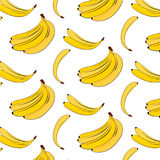 Wektorowy banana wzór Żółtej lato rośliny kolorowy tło Bananowy tropikalny naturalny owocowy druk Karmowa weganin pokrywa Zdjęcie Royalty Free