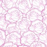 Wektorowy bezszwowy konturu wzór z różowymi maczkami  Zdjęcie Royalty Free