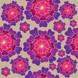 Wektorowy bezszwowy kwiecisty wzór z menchiami kwitnie na beżu Zdjęcie Royalty Free