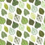 Wektorowy bezszwowy liścia wzór Zdjęcie Royalty Free
