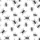 Wektorowy bezszwowy mrówki koloni insekta wzór ilustracji