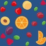 Wektorowy bezszwowy owoc wzór, pomarańcze, agresty, truskawki, śliwki, wiśnie, malinki, morele Ilustracja Wektor