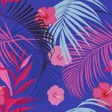 Wektorowy bezszwowy piękny artystyczny żywy tropikalny wzór z e Obraz Royalty Free