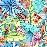 Wektorowy bezszwowy piękny artystyczny jaskrawy tropikalny wzór z bananem, Syngonium i Dracaena, leaf, lato plażowa zabawa ilustracja wektor