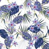 Wektorowy bezszwowy piękny artystyczny jaskrawy tropikalny wzór z Fotografia Royalty Free