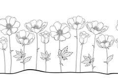 Wektorowy bezszwowy wzór konturu Windflower, anemon, pączek i liść w czerni na białym tle lub, Horyzontalna granica royalty ilustracja