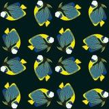 Wektorowy bezszwowy wzór od pływanie ryba cesarz angelfish Obrazy Stock