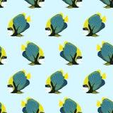 Wektorowy bezszwowy wzór od pływanie ryba cesarz angelfish Zdjęcia Royalty Free