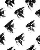 Wektorowy bezszwowy wzór z akwareli czerni angelfish Zdjęcia Stock