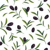 Wektorowy bezszwowy wzór z czarnymi gałązkami oliwnymi na bielu obraz royalty free