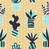 Wektorowy bezszwowy wzór z czarnymi houseplants w wazie i sukulentami Obraz Stock
