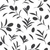 Wektorowy bezszwowy wzór z gałązkami oliwnymi na bielu zdjęcie royalty free