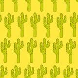 Wektorowy bezszwowy wzór z kaktusami - projektuje druk, plakat, karta, tkanina Obraz Royalty Free