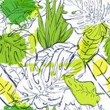 Wektorowy bezszwowy wzór z kontur palmy tropikalnymi liśćmi i akwarela kleksami Lato natury ilustracja royalty ilustracja