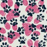 Wektorowy bezszwowy wzór z kota lub psa odciskami stopy Śliczny colorfu Zdjęcie Royalty Free