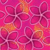 Wektorowy bezszwowy wzór z kropkowanym kwiatem Plumeria lub Frangipani na różowym tle z pomarańczowymi kropkami Zdjęcia Royalty Free