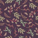 Wektorowy bezszwowy wzór z liśćmi, gałąź, bobki Zdjęcie Royalty Free