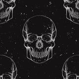 Wektorowy bezszwowy wzór z ludzkimi czaszkami Zdjęcia Stock