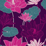Wektorowy bezszwowy wzór z pięknym różowym lotosowym kwiatem i gre Obrazy Royalty Free