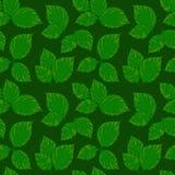 Wektorowy bezszwowy wzór z zielonymi liśćmi Zdjęcia Stock