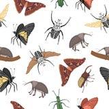 Wektorowy bezszwowy wz?r tropikalni insekty royalty ilustracja