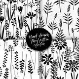 Wektorowy bezszwowy wzoru set rysuje dzikie rośliny atrament, ziele, monochromatyczna botaniczna ilustracja, kwieciści elementy,  ilustracji