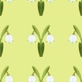 Wektorowy bezszwowy wzór z śnieżyczką, wiosna kwiat Zielony tło dla twój projekta, kartka z pozdrowieniami Fotografia Stock