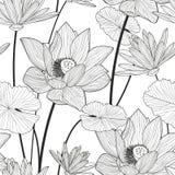 Wektorowy bezszwowy wzór z pięknym lotosowym kwiatem Czerń i W Obrazy Stock