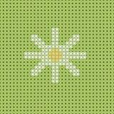 Wektorowy biały rumianek na zieleni polu Bezszwowy wzór, kanwa Ilustracji