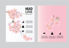 Wektorowy broszurki ulotki projekta układu szablon, strona, wielkościowa A4, strony tytułowej i plecy, Zdjęcia Royalty Free