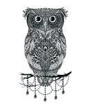 Wektorowy czarnej ręki sowy rysujący obsiadanie na gałęziastej ilustraci royalty ilustracja