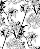 Wektorowy Czarny Bezszwowy wzór z Patroszonymi kwiatami, peonia ilustracja wektor