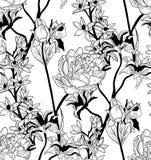 Wektorowy Czarny Bezszwowy wzór z Patroszonymi kwiatami, peonia ilustracji