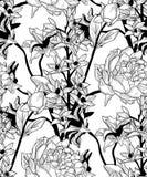 Wektorowy Czarny Bezszwowy wzór z Patroszonymi kwiatami, peonia royalty ilustracja